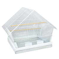 Finch Cages with Plexiglass http://feistyhome.phpwebhosting.com/cage_buying.htm
