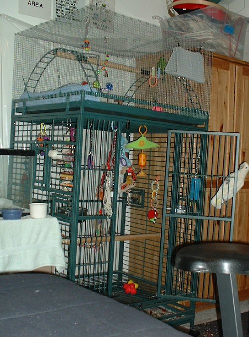 Enclosed playpen.  Click to enlarge.