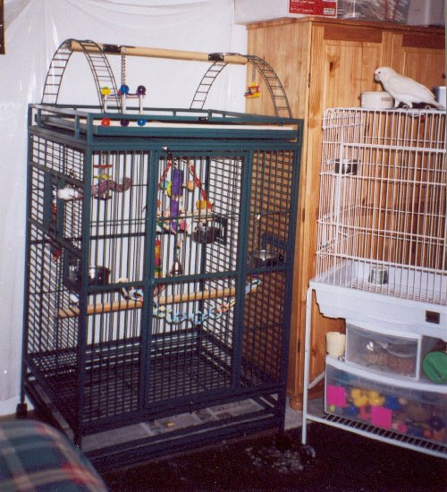 Loki's old and new cages.  Click to enlarge.